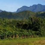 Aux alentours d'Andapa - le massif de Marojejy