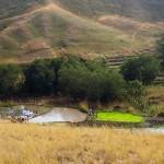 La région Bongolava a été classée zone rouge depuis longtemps de par sa topographie et en raison d'une certaine pratique d'élevage