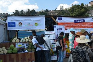 Foire de l'économie rurale : Plaidoyer en faveur d'une banque de développement