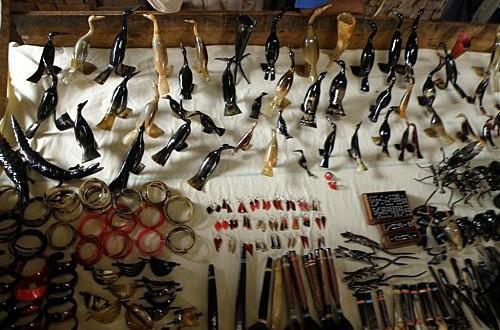 Artisanat : les cornes de zébu se raréfient en raison des exportations