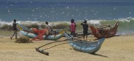 Lutter contre la surexploitation des ressources maritimes