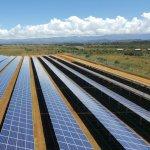 Des paysans ont laissé leur terre pour permettre l'installation des panneaux solaires.